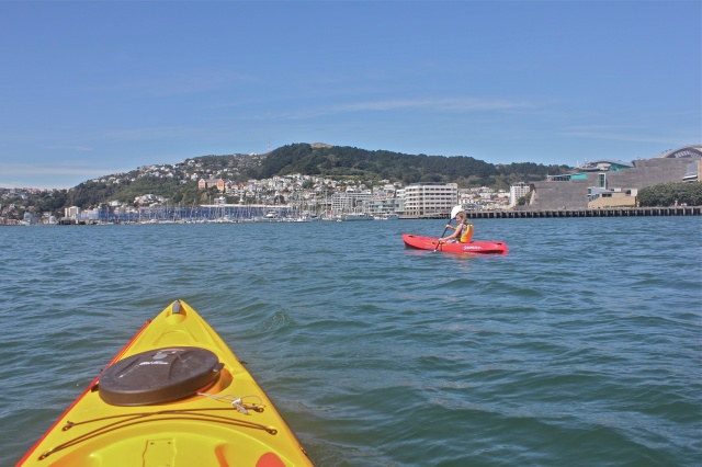 First time to ever go kayaking...whoo hoo! In Wellington harbor, to boot! It wasn't too hard until the very end, it was getting windy and impossible to go anywhere, haha, what a workout