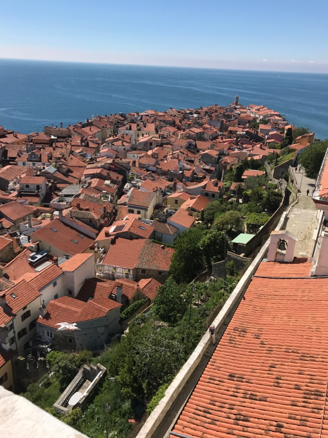 Piran - view of city from tower 2